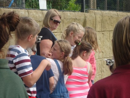 Isle of Wight residential 2014[11]