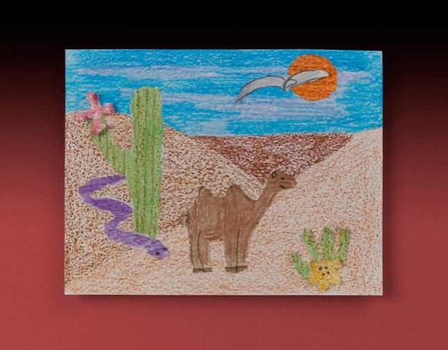 Sandy Desert Craft