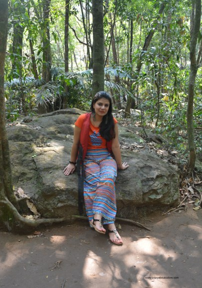 Dudhsagar Waterfalls, Goa: My experience and OOTD