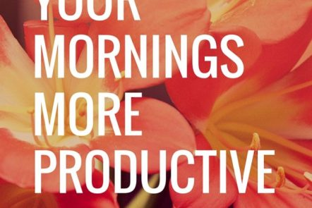 Make your mornings work for you. FREE Morning Routine download. Click through to read more or pin now and read later.