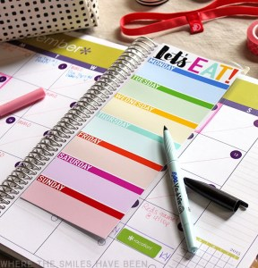 9 tips for using the Erin Condren life planner