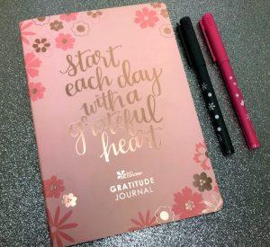Erin Condren gratitude journal