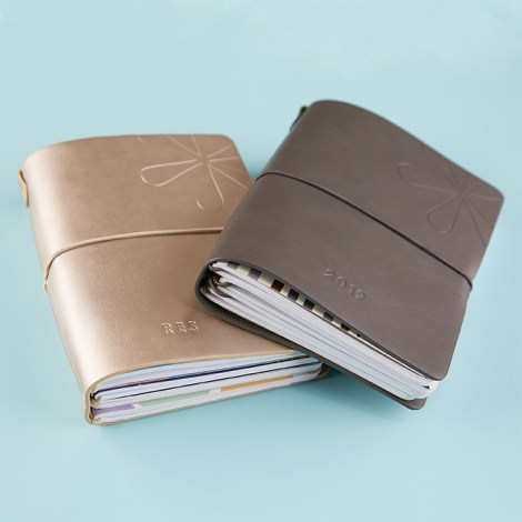 Erin Condren on the go folio, take your petite planners on the go