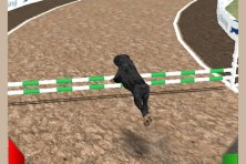 Dog Racing Simulator