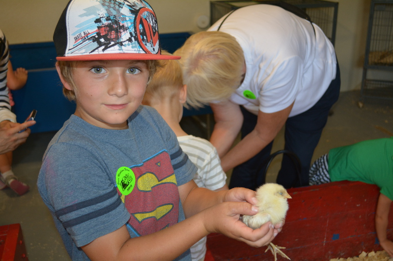 Holding A Baby Chick!