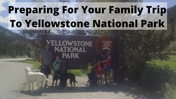 Preparing For Your Family Trip To Yellowstone