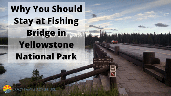 Why You Should Stay at Fishing Bridge in Yellowstone National Park