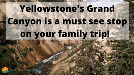 Yellowstone's Grand Canyon is a must see stop on your family trip!