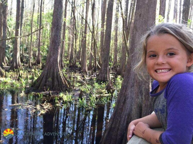 Highland Hammock Cypress Swamp Trail