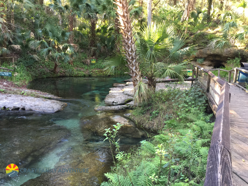 Tranquil waters for tubing by Orlando