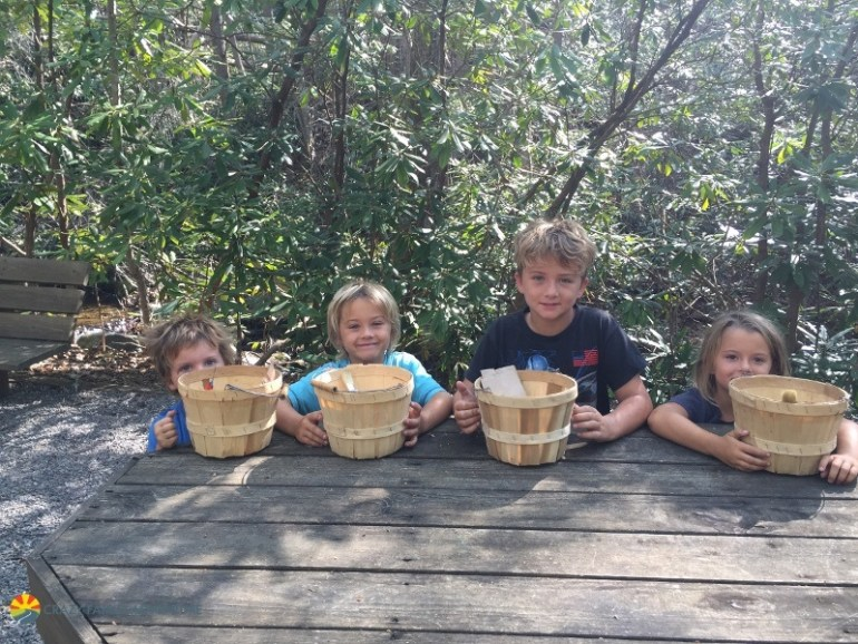 Foraging for food was one of the most unique kids activities in Asheville