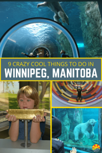 From Polar Bears to Human Rights to a $750,000 gold bar you can hold you don't want to miss this list of crazy cool things to do in Winnipeg!