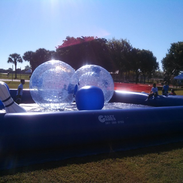 HAMSTER BALL BUMPER CAR ZONE WITH 3 BALLS