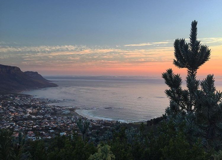 What to Do in Cape Town: 6 Can't Miss Activities