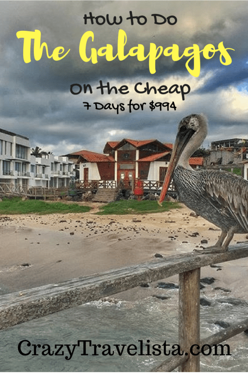 how to do the Galapagos on the cheap