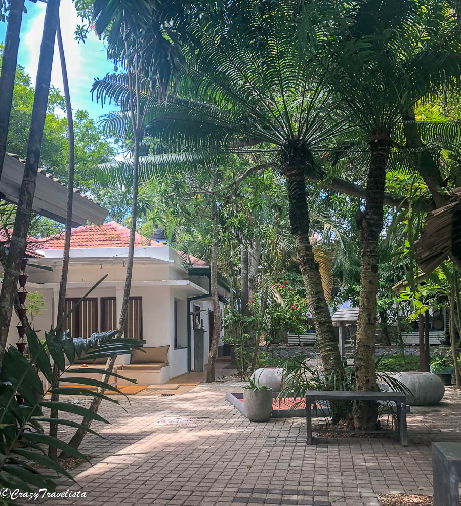 Sri Lanka 9 Day Itinerary