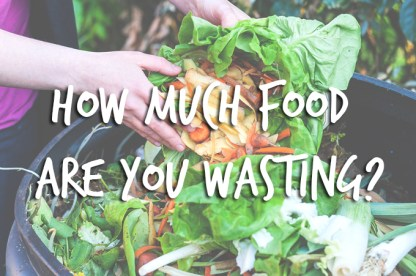 Image result for prevent food from going to waste