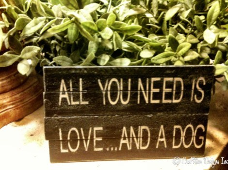 All you need is love...and a dog sign