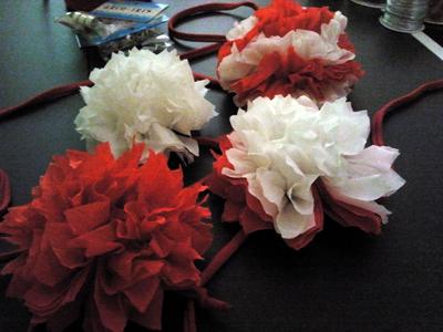 Flores 8 láminas
