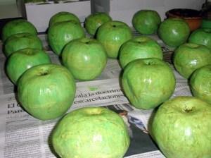 manzanas de vendas de yeso
