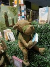 seto reno leyendo