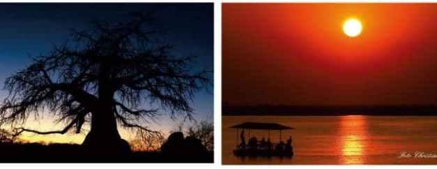 """BOTSWANA"" L'Africa più selvaggia"