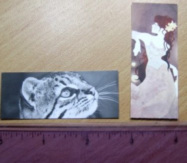 Moo Mini Cards with Ruler