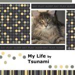 Tsuanmi's Life - My Memories Album Page 1