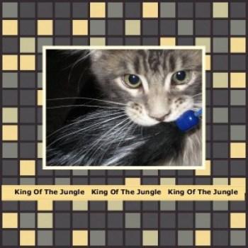 Tsuanmi - King Of The Jungle