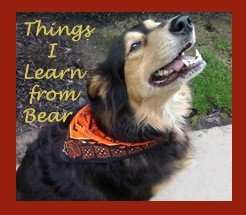 Victoria - Things I Learn From Bear