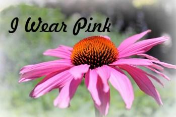 Donna - Holimess - I Wear Pink