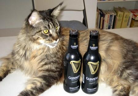 3-20-13 WW 1 Legend-Guinness