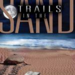 Trails In The Sand - Thumbnail