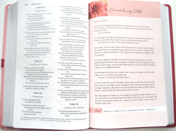 NIV Pink Bible - Devotional Pages
