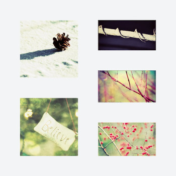 A Spirit Of Simplicity - Photo Montage