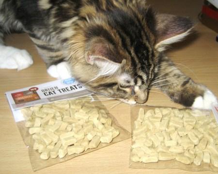 Magellan Finds Orijen Cat Treats