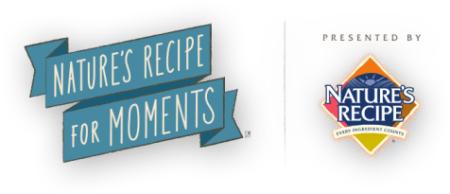 Recipe_For_Moments_Logo_476x206
