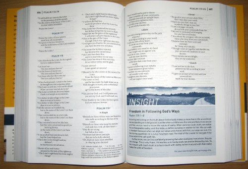 NIV Life Journey Bible - Insights