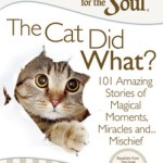 Chicken Soup For The Soul The Cat Did What