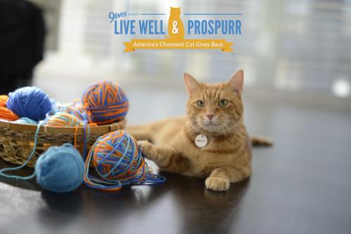 Morris Live Well & Prospurr
