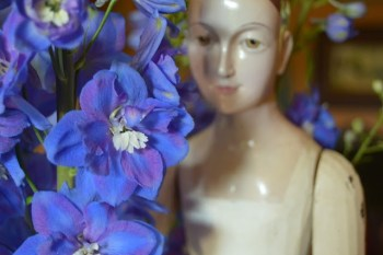 Delphiniums From The Garden