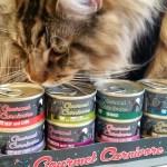 Tiki Cat Gourmet Carnivore - Magellan - Surprise