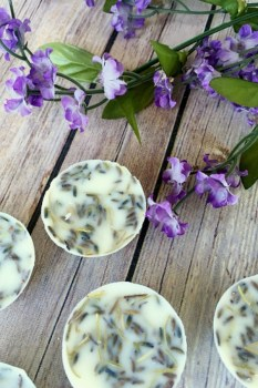 Lavender-Rosemary-Wax-Melts