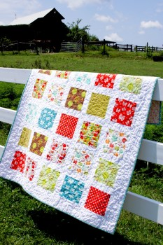 Acorn Valley Flannel Quilt
