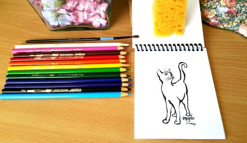 Creative Cat Coloring Book - A Peek Inside