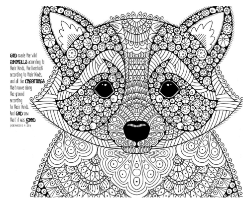 niv-wonders-of-creation-holy-bible-fox