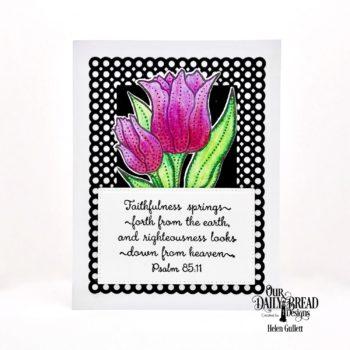 Faithfulness Card