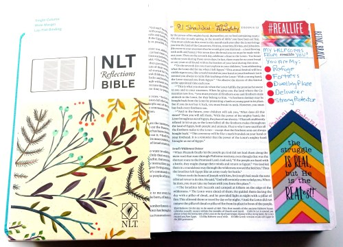 NLT-Reflections-Bible-Bullet-Journaling-Create-With-Joy
