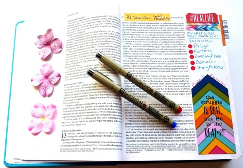 Bible-Journaling-Pens-create-with-joy
