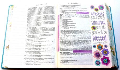 Inspire Bible - Deuteronomy Verse 80rot